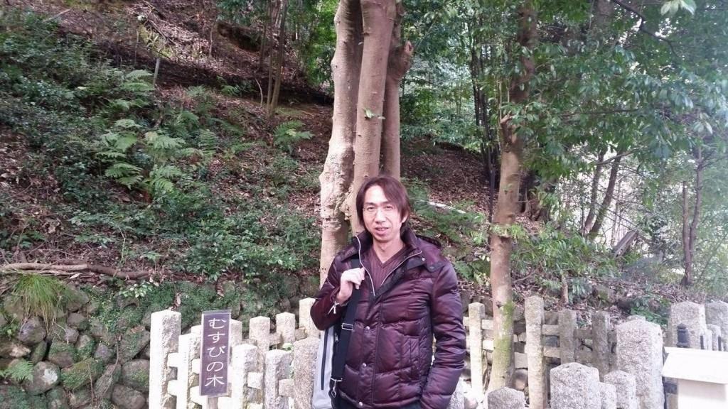 むすびの木